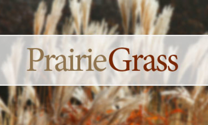 Prairie Style Landscapes