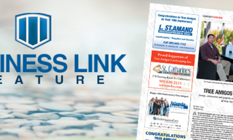 Business Link Feature