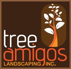 Amigos Design Build Landscapes